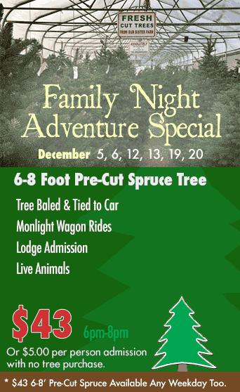 Erway S Christmas Tree Adventure Wilson Ny Niagara County